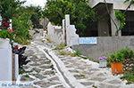 Apollonas Naxos - Cycladen Griekenland- nr 46