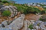Apollonas Naxos - Cycladen Griekenland- nr 59 - Foto van De Griekse Gids