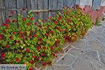 GriechenlandWeb.de Chalkio Naxos - Kykladen Griechenland- nr 8 - Foto GriechenlandWeb.de