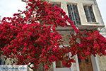 Chalkio Naxos - Cycladen Griekenland- nr 10 - Foto van De Griekse Gids