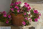 Chalkio Naxos - Cycladen Griekenland- nr 47 - Foto van De Griekse Gids