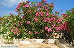 Engares Naxos - Cycladen Griekenland- nr 30