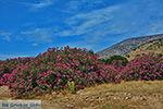 Kalantos Naxos - Cycladen Griekenland- nr 16 - Foto van De Griekse Gids