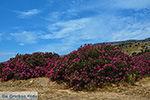 Kalantos Naxos - Cycladen Griekenland- nr 17 - Foto van De Griekse Gids