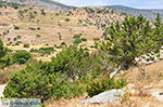 Kalantos Naxos - Cycladen Griekenland- nr 51 - Foto van De Griekse Gids