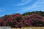 Kalantos Naxos - Cycladen Griekenland- nr 53 - Foto van De Griekse Gids