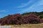 Kalantos Naxos - Cycladen Griekenland- nr 54 - Foto van De Griekse Gids
