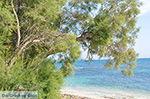 Kastraki Naxos - Cycladen Griekenland- nr 35 - Foto van De Griekse Gids