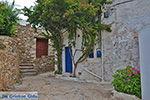 Kato Sangri Naxos - Cycladen Griekenland- nr 2