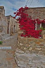 Kato Sangri Naxos - Kykladen Griechenland- nr 12 - Foto GriechenlandWeb.de