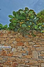 Kato Sangri Naxos - Cycladen Griekenland- nr 23 - Foto van De Griekse Gids
