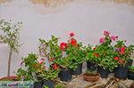 Kato Sangri Naxos - Cycladen Griekenland- nr 30 - Foto van De Griekse Gids