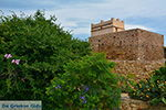 Kato Sangri Naxos - Cycladen Griekenland- nr 33 - Foto van De Griekse Gids