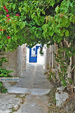 GriechenlandWeb.de Kato Sangri Naxos - Kykladen Griechenland- nr 43 - Foto GriechenlandWeb.de