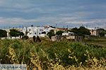 Kato Sangri Naxos - Cycladen Griekenland- nr 55 - Foto van De Griekse Gids
