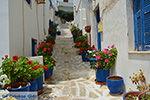 GriechenlandWeb.de Naxos Stadt - Kykladen Griechenland - nr 4 - Foto GriechenlandWeb.de