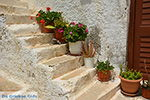 GriechenlandWeb.de Naxos Stadt - Kykladen Griechenland - nr 40 - Foto GriechenlandWeb.de