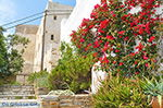 GriechenlandWeb Naxos Stadt - Kykladen Griechenland - nr 82 - Foto GriechenlandWeb.de