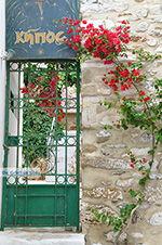 GriechenlandWeb.de Naxos Stadt - Kykladen Griechenland - nr 188 - Foto GriechenlandWeb.de