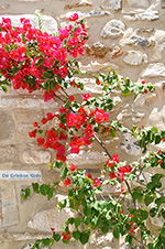 Naxos stad - Cycladen Griekenland - nr 215 - Foto van De Griekse Gids