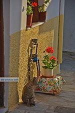 Naxos stad - Cycladen Griekenland - nr 299 - Foto van De Griekse Gids
