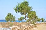 Plaka Naxos - Cycladen Griekenland - nr 34 - Foto van De Griekse Gids