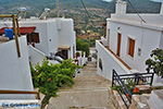 Potamia Naxos - Cycladen Griekenland - nr 7 - Foto van De Griekse Gids