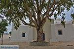 Potamia Naxos - Cycladen Griekenland - nr 20 - Foto van De Griekse Gids