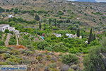 Potamia Naxos - Cycladen Griekenland - nr 53