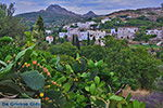 Potamia Naxos - Cycladen Griekenland - nr 65 - Foto van De Griekse Gids