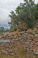 Potamia Naxos - Cycladen Griekenland - nr 104