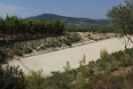 Nemea Korinthe   Peloponessos   Griekenland foto 39