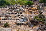 Vulkaan Nisyros - Dodecanese foto 4 - Foto van De Griekse Gids