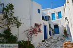 Lefkes Paros - Cycladen -  Foto 20 - Foto van De Griekse Gids