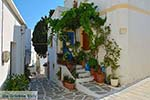 Lefkes Paros - Cycladen -  Foto 40 - Foto van De Griekse Gids