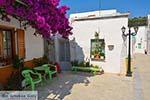 Lefkes Paros - Cycladen -  Foto 49 - Foto van De Griekse Gids