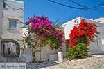 Parikia Paros - Cycladen -  Foto 50 - Foto van De Griekse Gids