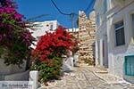 Parikia Paros - Cycladen -  Foto 52 - Foto van De Griekse Gids