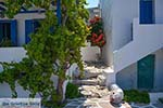 Parikia Paros - Cycladen -  Foto 69 - Foto van De Griekse Gids