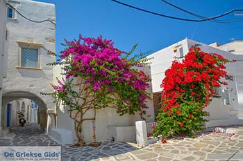 Parikia Paros - Cycladen -  Foto 50 - Foto van https://www.grieksegids.nl/fotos/paros/parikia/350pix/parikia-paros-050.jpg