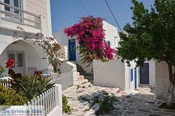 Parikia Paros - Cycladen -  Foto 71 - Foto van https://www.grieksegids.nl/fotos/paros/parikia/350pix/parikia-paros-071.jpg