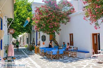 Parikia Paros - Cycladen -  Foto 79 - Foto van https://www.grieksegids.nl/fotos/paros/parikia/350pix/parikia-paros-079.jpg
