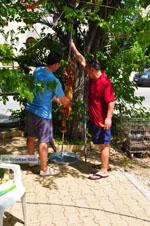 Pasen in Aedipsos | Evia Pasen | De Griekse Gids foto 210 - Foto van De Griekse Gids