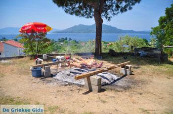 Pasen in Aedipsos | Evia Pasen | De Griekse Gids foto 110 - Foto van https://www.grieksegids.nl/fotos/pasen/normaal/pasen-griekenland-171.jpg