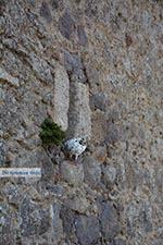 GriechenlandWeb Chora - Insel Patmos - Griekse Gids Foto 65 - Foto GriechenlandWeb.de