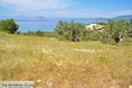 Koilada (Kilada) | Argolis Peloponessos | Griekenland foto 26 - Foto van De Griekse Gids