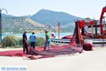 Koilada (Kilada) | Argolis Peloponessos | Griekenland foto 34 - Foto van De Griekse Gids