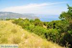 Bij oud Epidavros | Argolis Peloponessos | Griekenland foto 2 - Foto van De Griekse Gids
