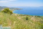 Bij oud Epidavros | Argolis Peloponessos | Griekenland foto 8 - Foto van De Griekse Gids