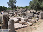 GriechenlandWeb.de Olympia (Elia) Griechenland - GriechenlandWeb.de - Foto 28 - Foto GriechenlandWeb.de